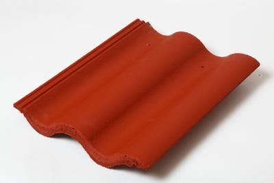 SYNUS 1/1  taška základní - červená